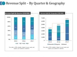 revenue_split_by_quarter_and_geography_ppt_rules_Slide01