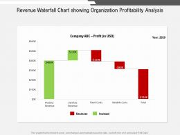 Revenue Waterfall Chart Showing Organization Profitability Analysis