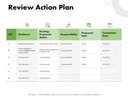 Review Action Plan Ppt Powerpoint Presentation Model Professional