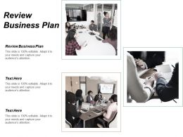 Review Business Plan Ppt Powerpoint Presentation Gallery Inspiration Cpb