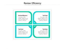 Review Efficiency Ppt Powerpoint Presentation Gallery Picture Cpb