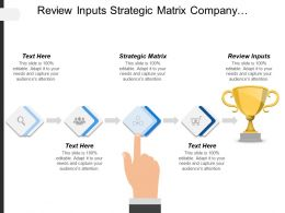 Review Inputs Strategic Matrix Company Performance Strategic Questions Cpb