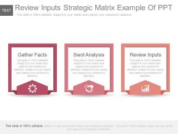 Review Inputs Strategic Matrix Example Of Ppt