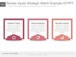 review_inputs_strategic_matrix_example_of_ppt_Slide01
