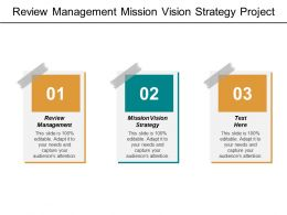 Review Management Mission Vision Strategy Project Priorities Vision Statements Cpb