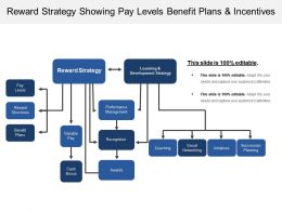 Reward Strategy Showing Pay Levels Benefit Plans And Incentives