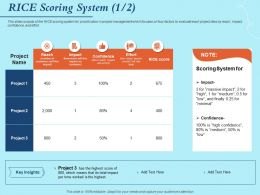 RICE Scoring System Effort Powerpoint Presentation Portrait