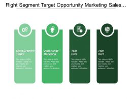 Right Segment Target Opportunity Marketing Sales Tools Training