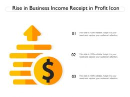 Rise In Business Income Receipt In Profit Icon