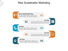 Rise Sustainable Marketing Ppt Powerpoint Presentation Demonstration Cpb