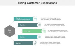 Rising Customer Expectations Ppt Powerpoint Presentation Ideas Format Cpb
