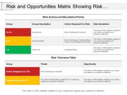 Risk And Opportunities Matrix Showing Risk Tolerance Table With Opportunity