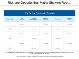 Risk And Opportunities Matrix Showing Root Cause And Probability Of Risks
