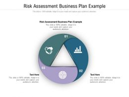 Risk Assessment Business Plan Example Ppt Powerpoint Presentation Guide Cpb