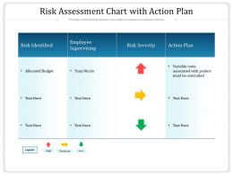 Risk Assessment Chart With Action Plan