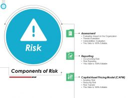 Risk Capital Asset Ppt Powerpoint Presentation Ideas Styles