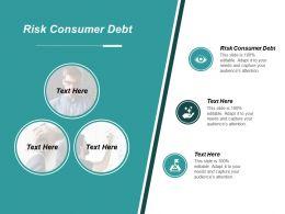 Risk Consumer Debt Ppt Powerpoint Presentation File Maker Cpb