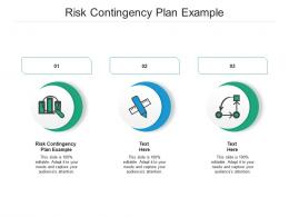 Risk Contingency Plan Example Ppt Powerpoint Presentation Infographic Template Cpb