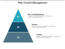 Risk Control Management Ppt Powerpoint Presentation Styles Show Cpb