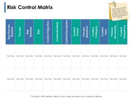 Risk Control Matrix Narrative Ppt Powerpoint Presentation Show Template