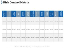 Risk Control Matrix Ppt Slides Infographic Template
