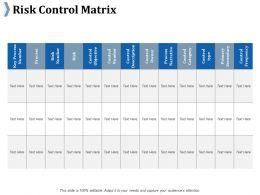 Risk Control Matrix Ppt Slides Infographic Template