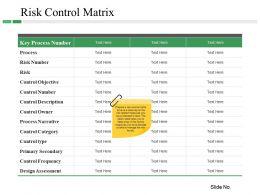 Risk Control Matrix Ppt Templates