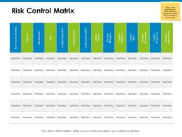 Risk Control Matrix Process Ppt Powerpoint Presentation Icon Show