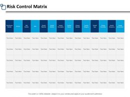 Risk Control Matrix Process Ppt Powerpoint Presentation Pictures Slides