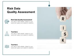 Risk Data Quality Assessment Ppt Powerpoint Presentation Inspiration Deck Cpb