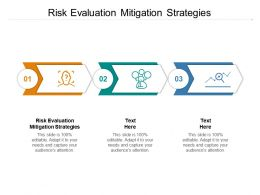 Risk Evaluation Mitigation Strategies Ppt Powerpoint Presentation Professional Cpb