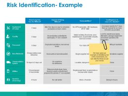 Risk Identification Example Ppt Infographics Slides