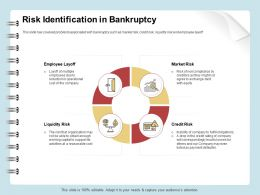 Risk Identification In Bankruptcy Market Ppt File Aids
