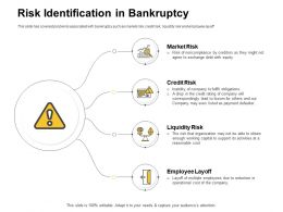 Risk Identification In Bankruptcy Payment Defaulter Ppt Powerpoint Presentation Show