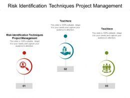 Risk Identification Techniques Project Management Ppt Format Cpb