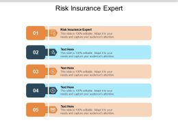 Risk Insurance Expert Ppt Powerpoint Presentation Gallery Cpb