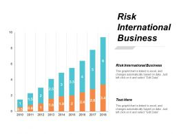 Risk International Business Ppt Powerpoint Presentation Inspiration Guidelines Cpb