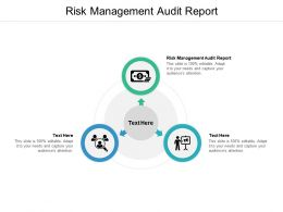 Risk Management Audit Report Ppt Powerpoint Presentation File Graphic Tips Cpb