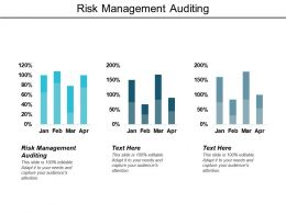 Risk Management Auditing Ppt Powerpoint Presentation Model Display Cpb