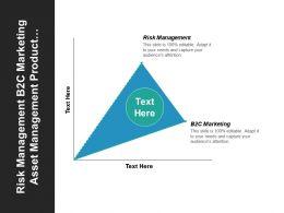 Risk Management B2c Marketing Asset Management Product Innovation Development Cpb
