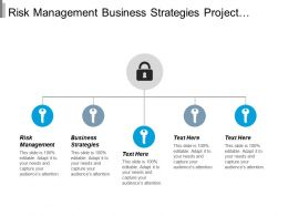 Risk Management Business Strategies Project Management Budgeting Growth Strategies Cpb
