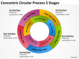 risk_management_consulting_concentric_circular_process_5_stages_powerpoint_slides_0523_Slide01