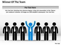 Risk Management Consulting Winner Of The Team Powerpoint Slides 0528