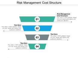 Risk Management Cost Structure Ppt Powerpoint Presentation File Model Cpb