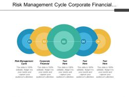 Risk Management Cycle Corporate Financial Restructuring Process Revenue Management Cpb