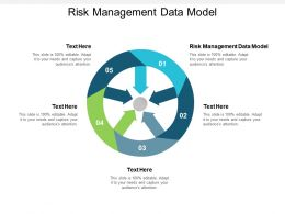 Risk Management Data Model Ppt Powerpoint Presentation Inspiration Show Cpb