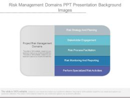 Risk Management Domains Ppt Presentation Background Images