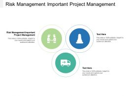 Risk Management Important Project Management Ppt Powerpoint Presentation Inspiration Slide Cpb