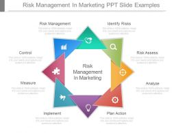 Risk Management In Marketing Ppt Slide Examples