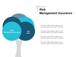 Risk Management Insurance Ppt Powerpoint Presentation Pictures Elements Cpb